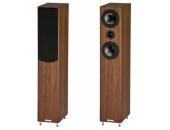 ASW Cantius 412 Walnut Tree Matt